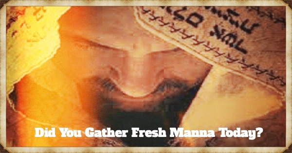 DID YOU GATHER FRESH MANNA TODAY?